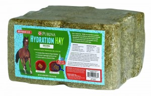 Hydration-Hay-Block
