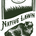 native-lawn-seed-mix