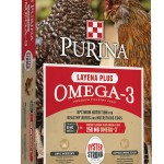 Layena-Omega-3-Oyster-Strong-Bag-JPG