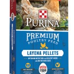 Layena-Pellets-Oyster-Strong-Bag-JPG