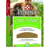 Purina-Organic-Starter-Grower-Bag