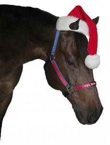 ChristmasHampton2