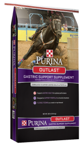 purina outlast gastric supplement